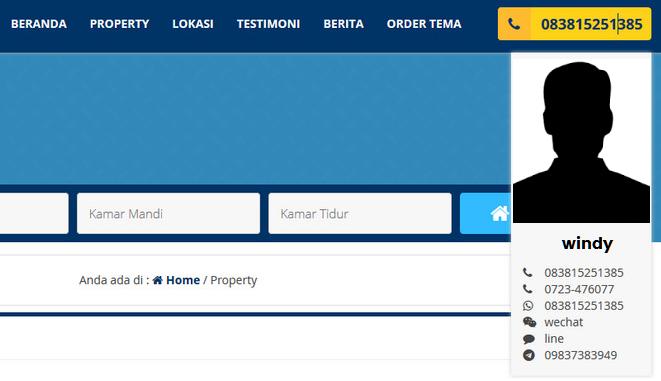 jasa web property