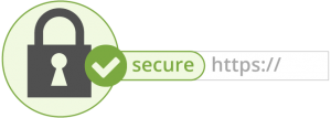 jasa buat website https secure
