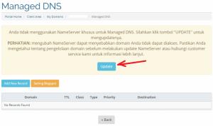 cara setting dns domain