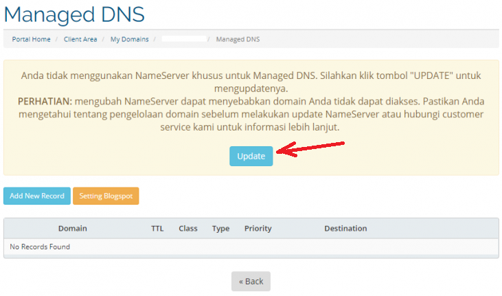 cara setting dns domain